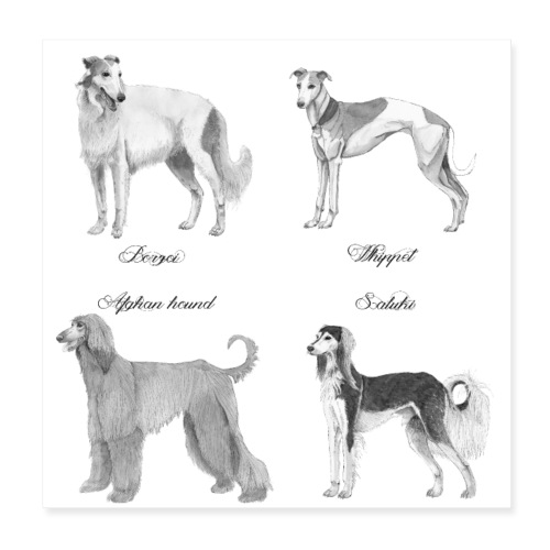 Hounds poster - Poster 20x20 cm