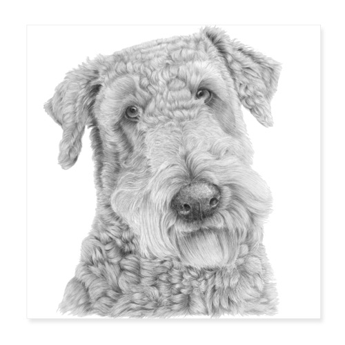 airedale terrier Poster - Poster 20x20 cm