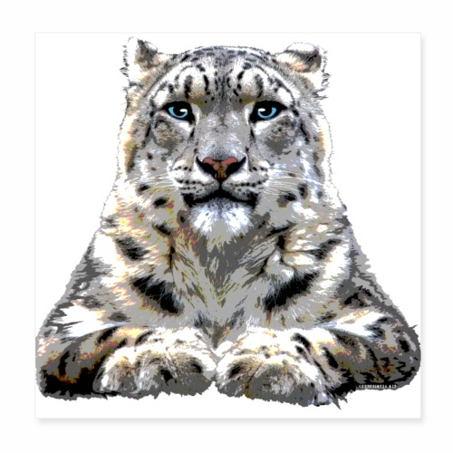 FP10 57 Snowleopard - Juliste 20 x 20 cm