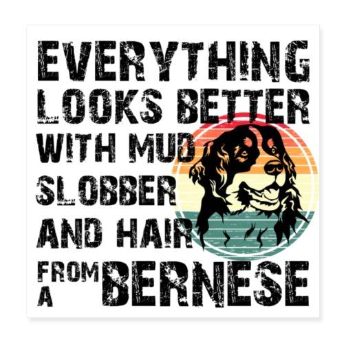Bernese mountain dog poster - Poster 20x20 cm