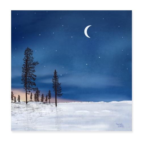 Poolnacht Lapland - Poster 20 x 20 cm
