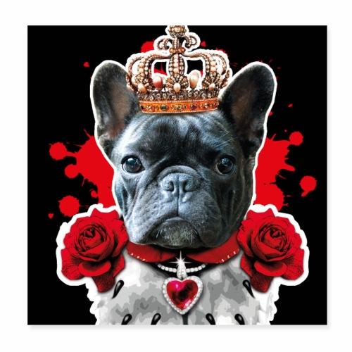 01 French Bully Bulldog King Queen Mundschutz - Poster 20x20 cm