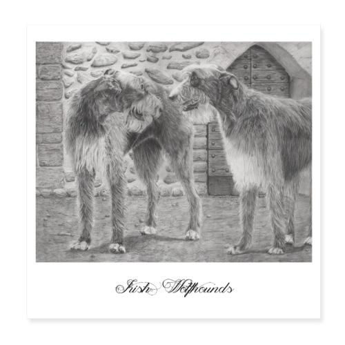 Irish wolfhound Poster - Poster 20x20 cm