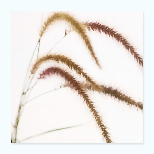 Tender grass watercolor minimalism nature - Poster 16 x 16 (40x40 cm)