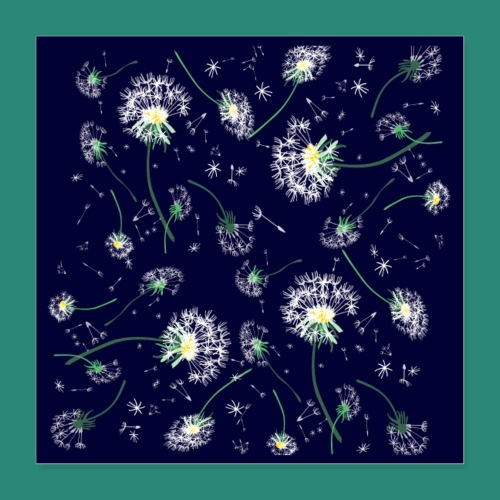 Pusteblumen Poster - Poster 40x40 cm