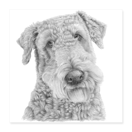 airedale terrier Poster - Poster 40x40 cm