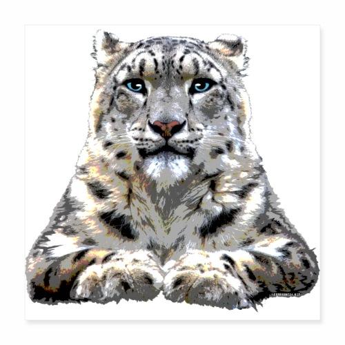 FP10 57 Snowleopard - Juliste 40 x 40 cm