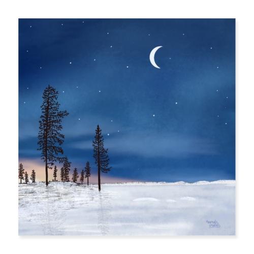 Poolnacht Lapland - Poster 40 x 40 cm