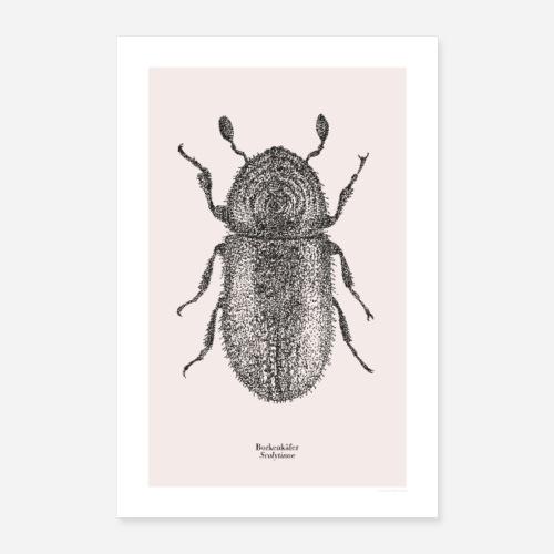 Borkenkäfer | Scolytinae Poster - Poster 60x90 cm