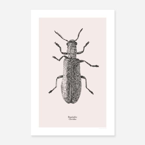Buntkäfer | Cleridae Poster - Poster 60x90 cm