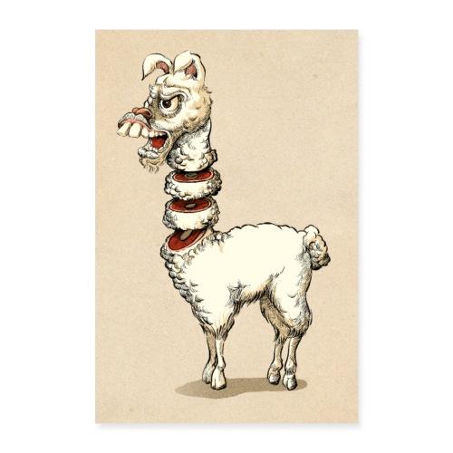 Lama - Poster 60x90 cm