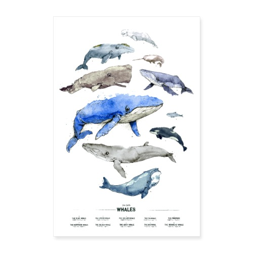 Wale (Whales) - Poster 60x90 cm