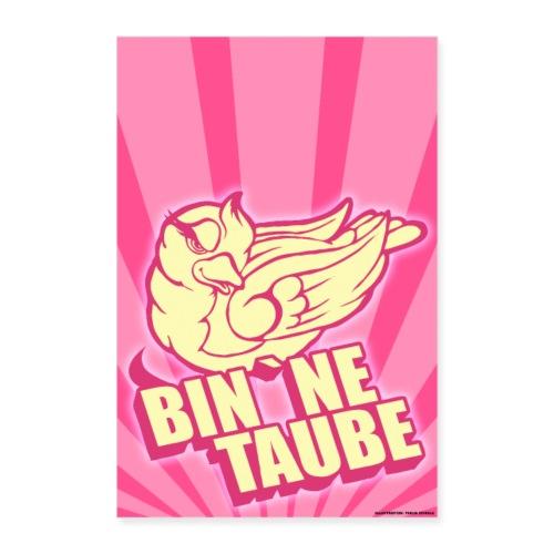 BIn `ne Taube - Poster 60x90 cm
