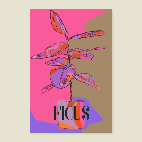 Cool ficus - Poster 60x90 cm