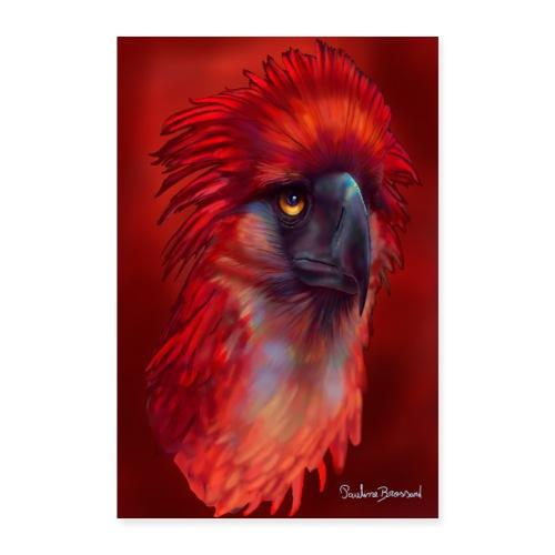 phoenix - Poster 60 x 90 cm
