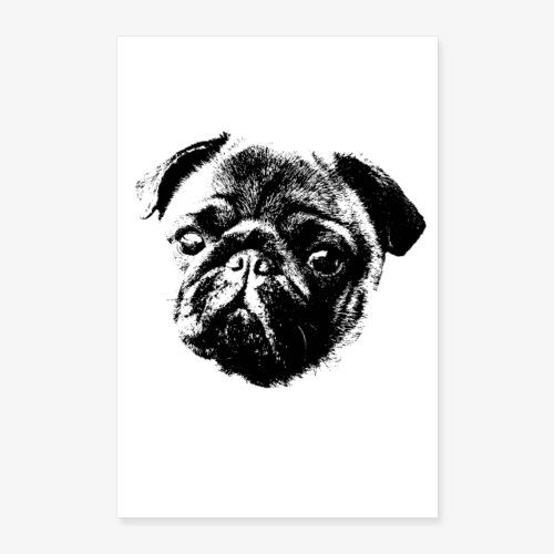 Pug Pic   Poster mit Mopsgesicht - Poster 40x60 cm