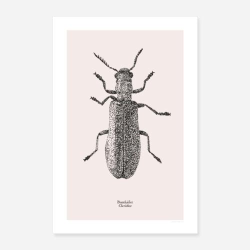 Buntkäfer | Cleridae Poster - Poster 40x60 cm