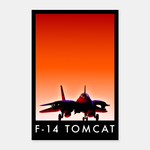 F-14 Tomcat sunset poster / F14 / F 14 - Poster 16 x 24 (40x60 cm)
