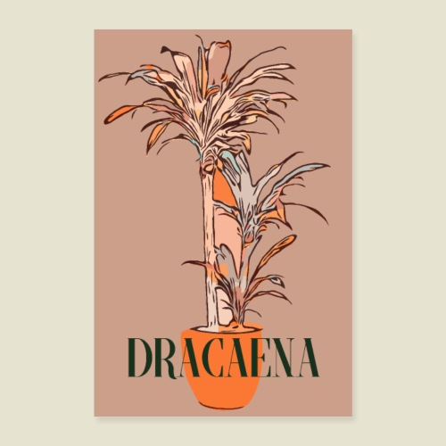 Cool Dracaena - Poster 40x60 cm