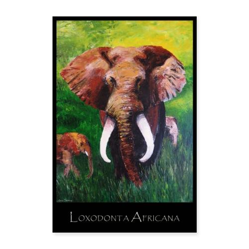 Elefant I Tusker I Afrika - Poster 40x60 cm