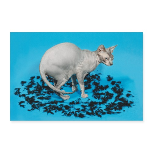 Lucky the Cat - Poster 90x60 cm