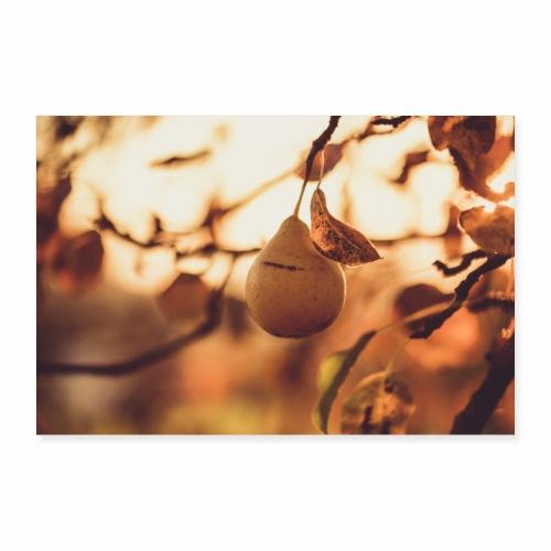Birne im Sonnenuntergang - Poster 90x60 cm