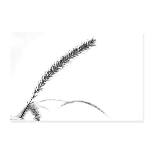 vegetal - Poster 90 x 60 cm
