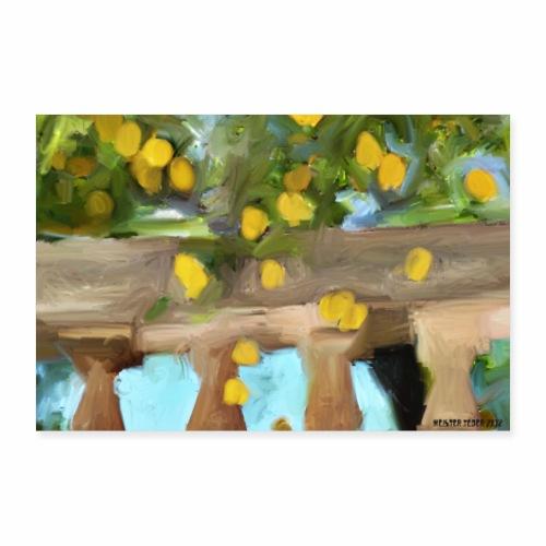 2 3 DE Zitronen auf Balkon - Poster 90x60 cm