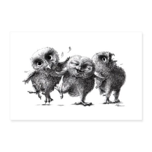 Drei lustige freche Eulen - Poster 90x60 cm
