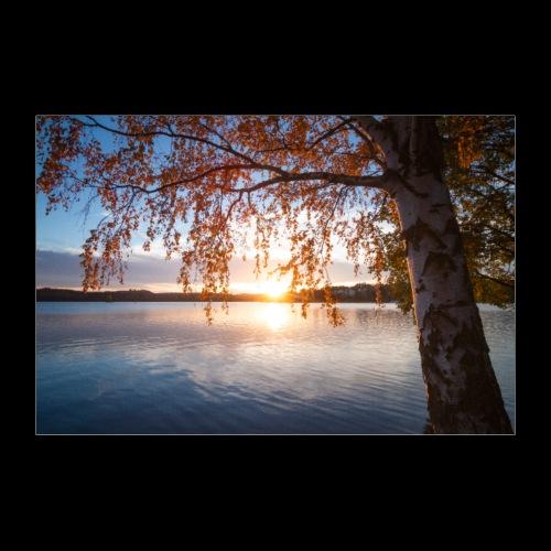 Saimaa syksyllä - Juliste 90x60 cm
