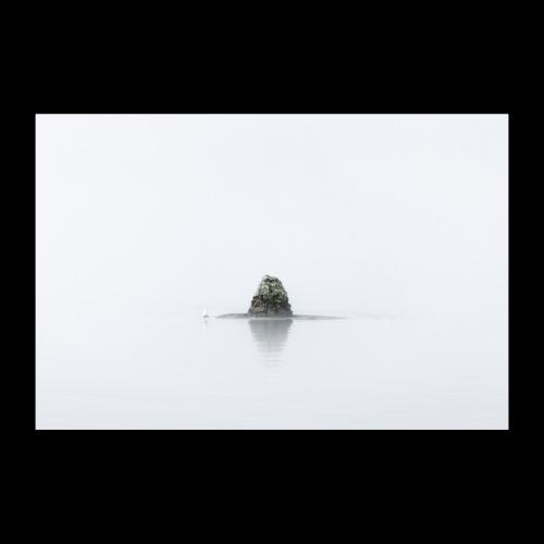 Usvainen maisema - Juliste 90x60 cm