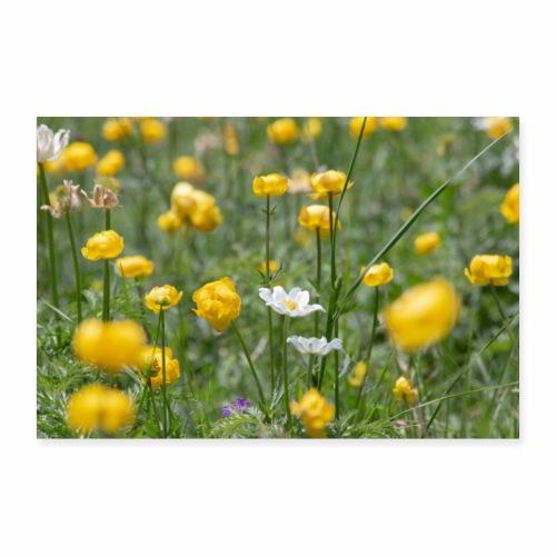 Alpage en fleurs - Poster 90 x 60 cm