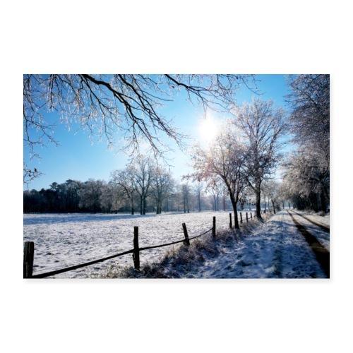 Scherenbostel im Schnee - Poster 90x60 cm