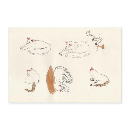 Cat Company - Poster 36 x 24 (90x60 cm)
