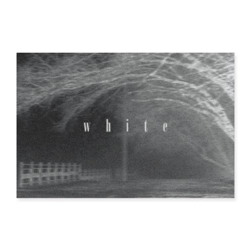 White - Poster 90x60 cm