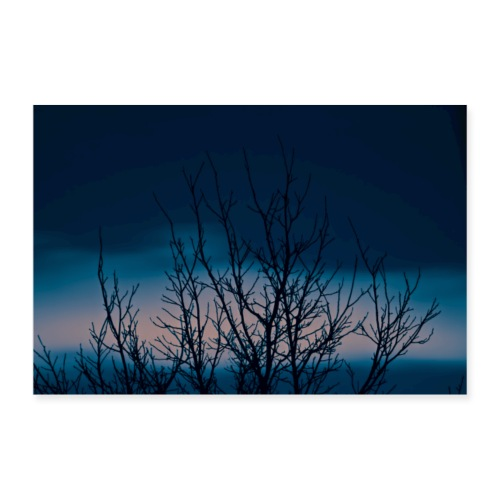 Tree at the night sky - Plakat o wymiarach 90x60 cm