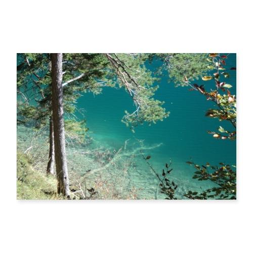 Alpsee, Königlicher Natursee - Poster 90x60 cm