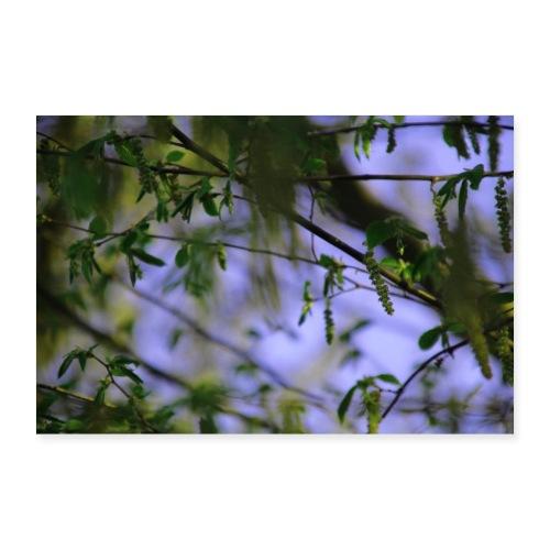 Blätter - Poster 90x60 cm
