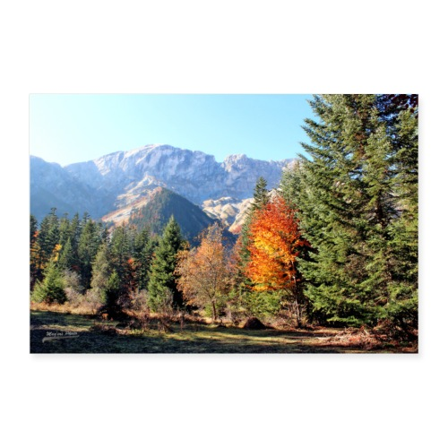 Poster Champsaur en automne (Hautes-Alpes) - Poster 90 x 60 cm