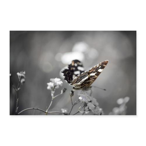 Verträumter Schmetterling - Poster 30x20 cm