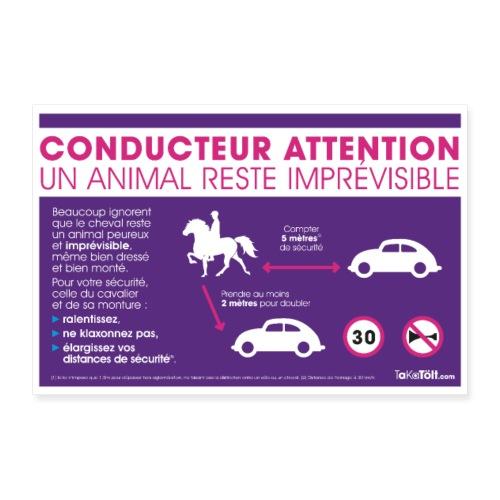 Sécurité à cheval - Poster 30 x 20 cm