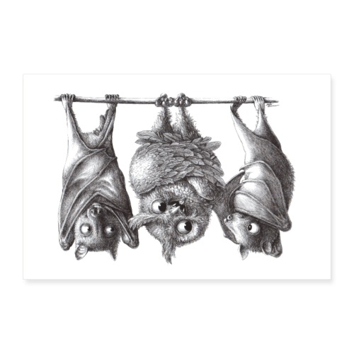 Vampireule und Fledermäuse - Poster 30x20 cm