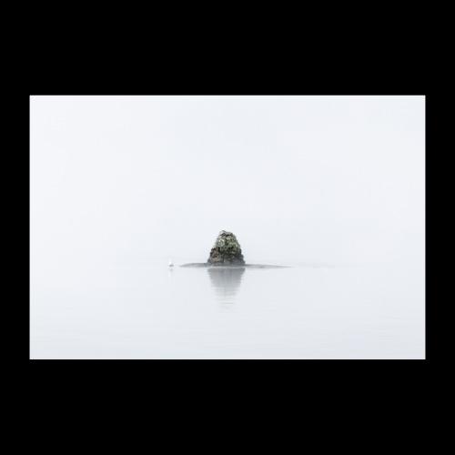 Usvainen maisema - Juliste 30x20 cm