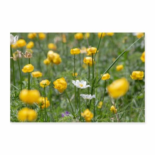 Alpage en fleurs - Poster 30 x 20 cm