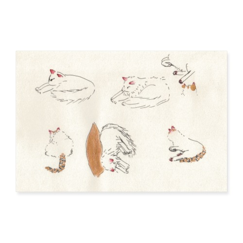 Cat Company - Poster 12 x 8 (30x20 cm)