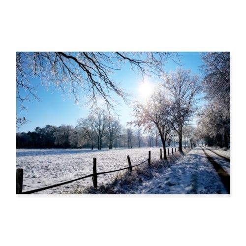 Scherenbostel im Schnee - Poster 60x40 cm