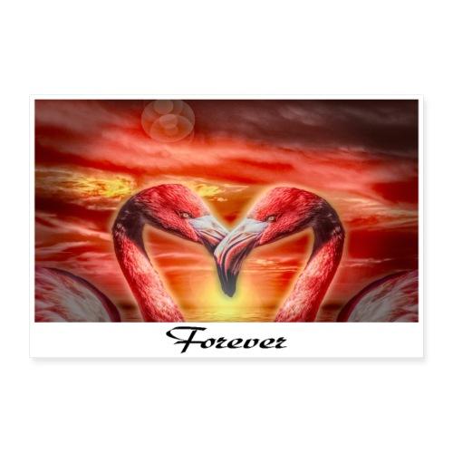 Forever - Poster 60x40 cm