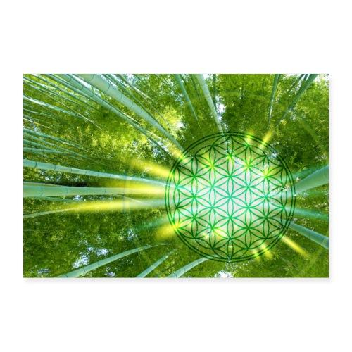 Blume des Lebens Bambuswald Flower of Life - Poster 60x40 cm