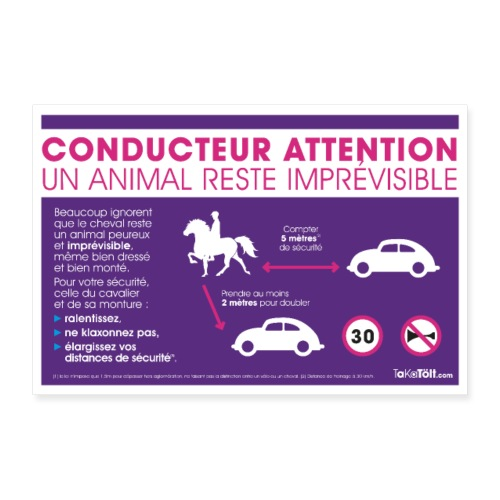 Sécurité à cheval - Poster 60 x 40 cm