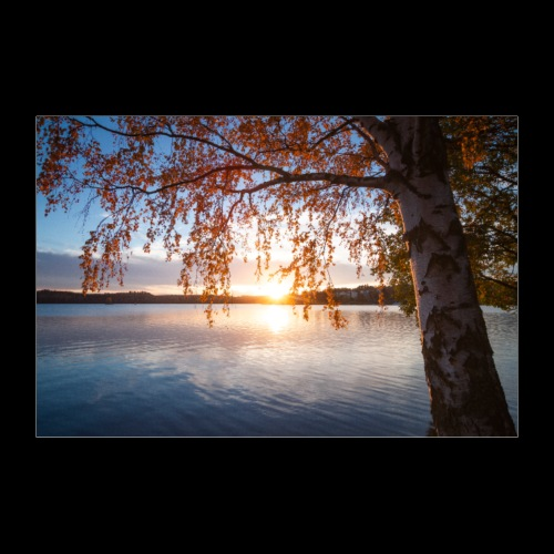 Saimaa syksyllä - Juliste 60x40 cm